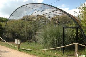 Aviary for Inca jays and golden pheasants