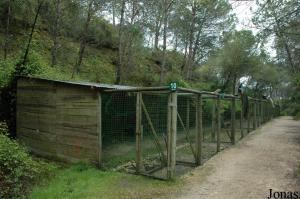 Aviaries for pheasants and different kinds of birds